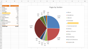 The pivot table with a pie chart displaying the same data.
